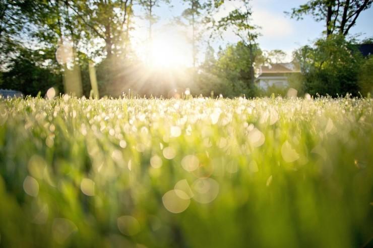 赴·春日之约 | 触摸春天,一方阳光