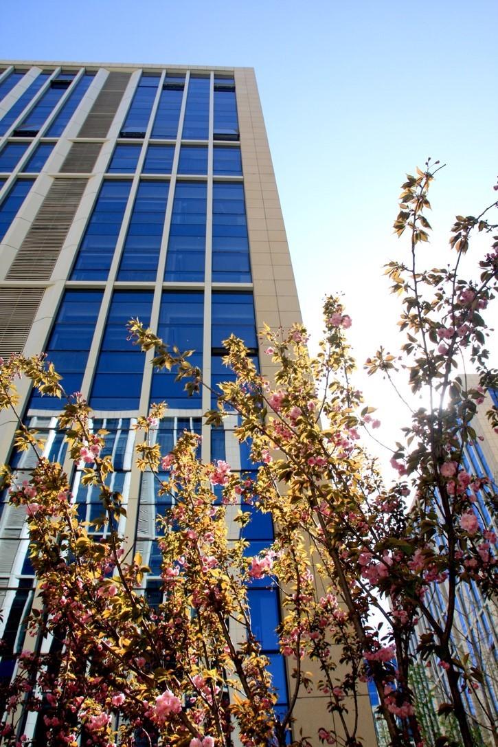 第三届樱花之约双创节启幕 天恒世界集人气爆涨