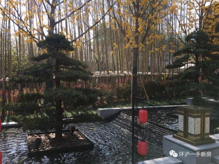上海长兴岛【泰禾大城小院】地铁19号线开启城市岛居院落生活
