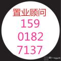 焦点网友154468982