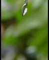 灿烂的雨天