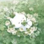朵朵rAnP