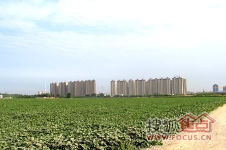 长安区东北板块存在大量农田