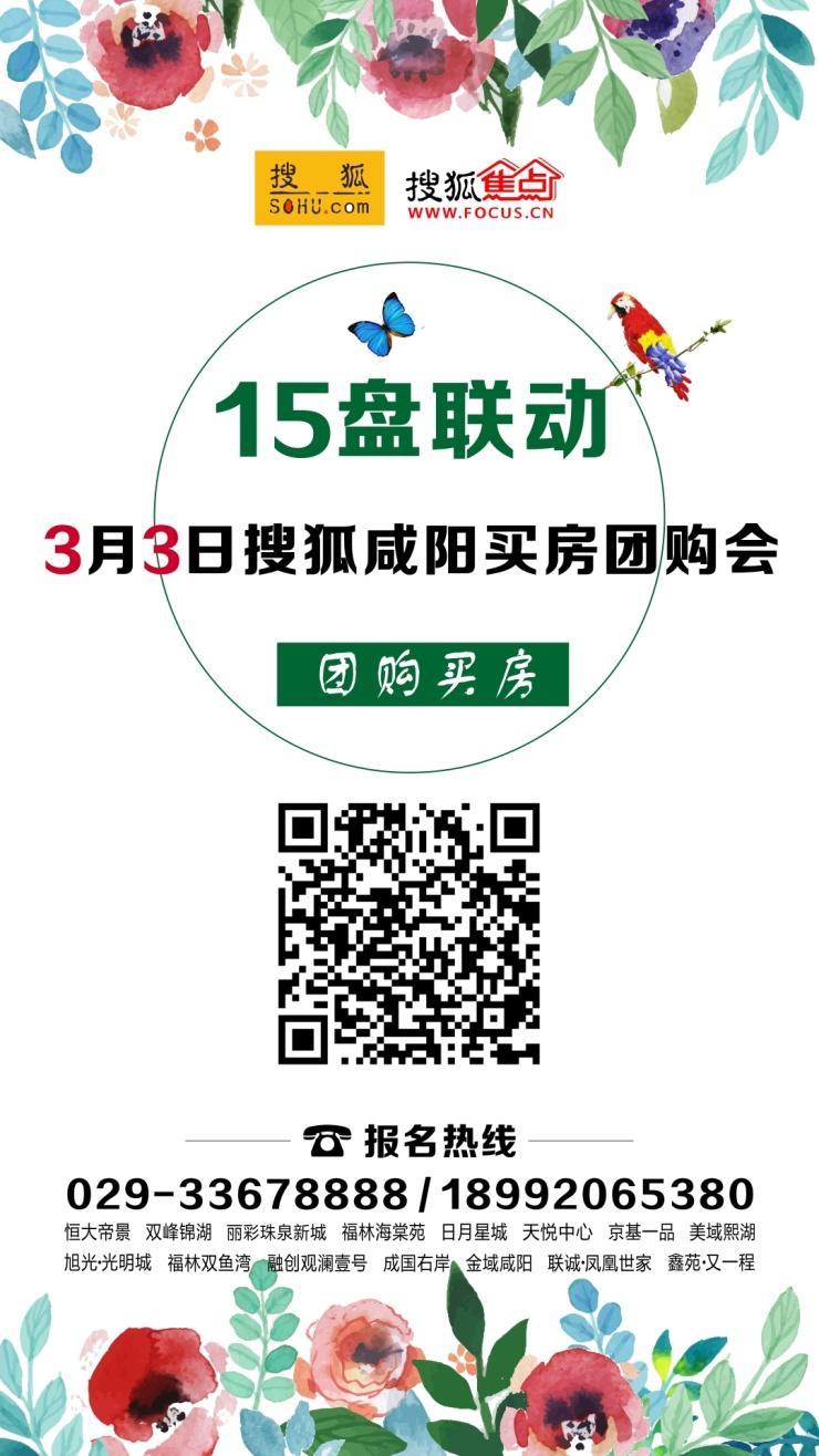 """咸阳搜狐3·3惊现""""百人看房团""""共上客183组成交22套"""