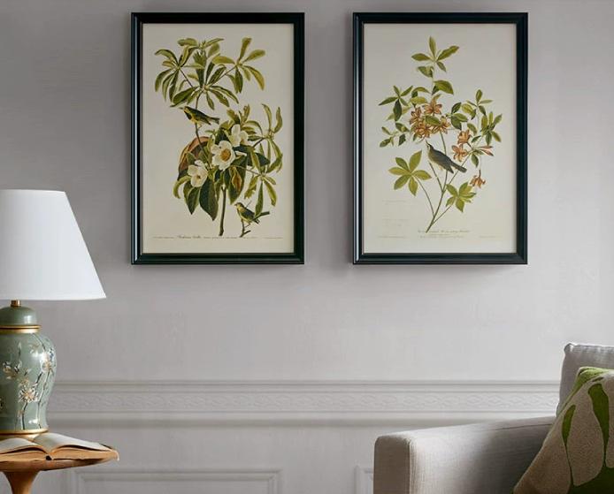 Harbor House这两款美式风植物装饰画,双十一已预售