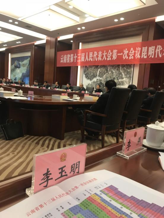 凯旋利集团李玉明当选为云南省人大代表