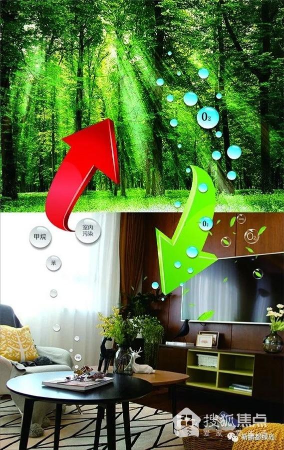 新鹏都·绿岛:科技引领未来建筑 舒适筑就品质生活