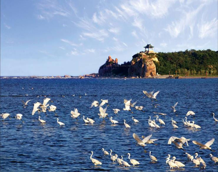 生态立市 北戴河康养休闲度假产业迎来华丽转型