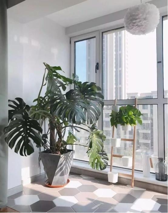 阳台排列五开奖结果要不要贴砖?注意这些事项,让你家阳台实用颜值高