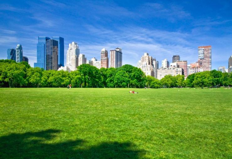 穿越城市中央公园 见证一座城市富人区的崛起