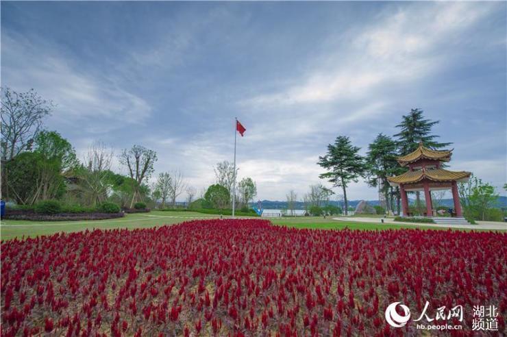 """煤厂变滨江公园 湖北宜昌""""424公园""""举行升旗仪式迎国庆"""