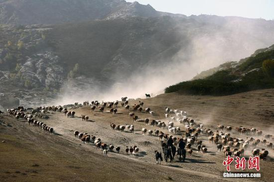 """新疆农牧民的""""安居""""新生活:日子越来越好"""