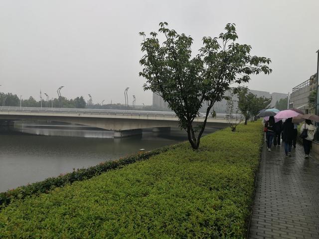 郑州今年已建成168个微公园小游园,5个郊野公园已开建